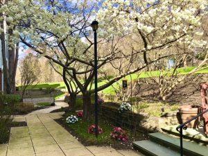 Charter Senior Living of Towson Outdoor Area